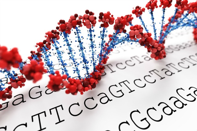 "Mindbody Epigenetics studies how certain molecules called ""markers"" affect how the DNA in our cells is read."