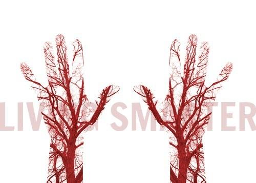 Puntos gatillo y los vasos sanguíneos