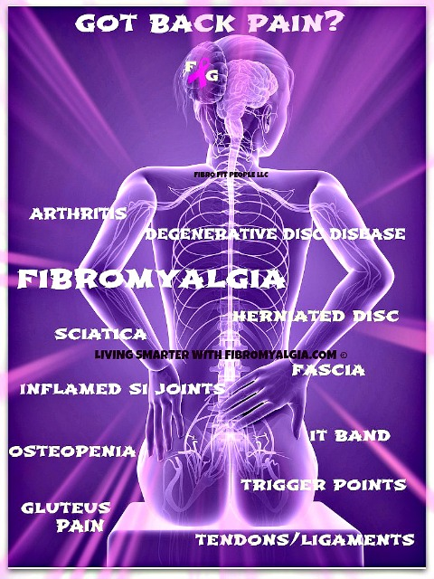 With many nerves and muscles in the back and around the spine, this is a vulnerable area.