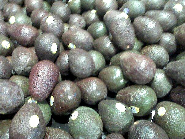 Avocadoes, the healthy raw fat of champions.