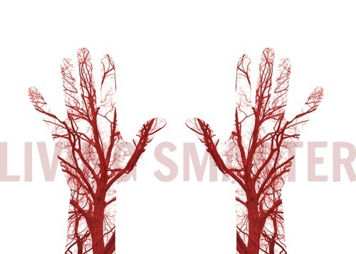Utløserpunkter og blodkar