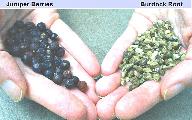There are a few herbal remedies that can support chronic pain management for the lymphatic system. Two of these are Juniper Berries and Burdock Root.